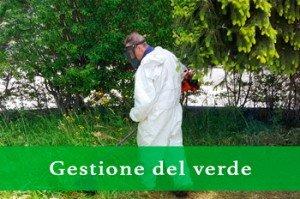 Galileo Cooperativa di servizi - Gestione del verde