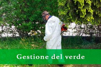 Galileo Cooperativa di servizi - Servizi di Gestione del verde